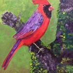 bird_24051547415_o