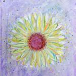 flower_25336380190_o