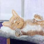kitty-sleeping_25001496944_o